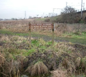 Walthamstow_Marshes_-_geograph.org_.uk_-_93325